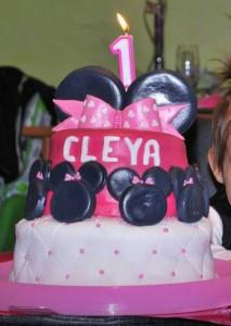 gato-cleya