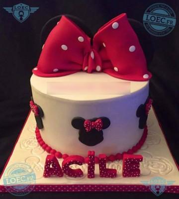 gato-acile4
