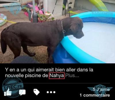 Nahya-n'est-pas-le-chien