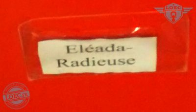 eleada-radieuse
