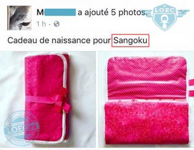 objet-sangoku