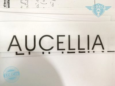 aucellia
