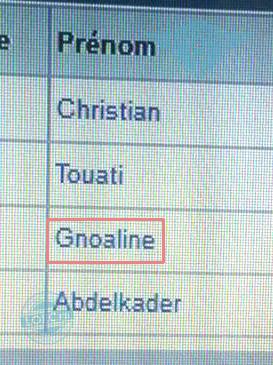 gnoaline