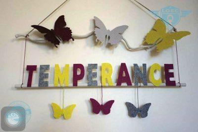 obj-temperance